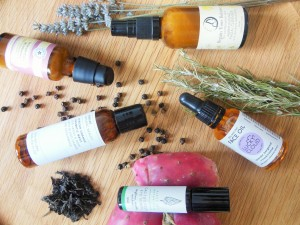 Apothecary style skincare products with natural ingredients on wooden background