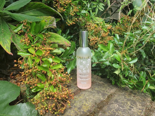 Beauty Elixir in garden