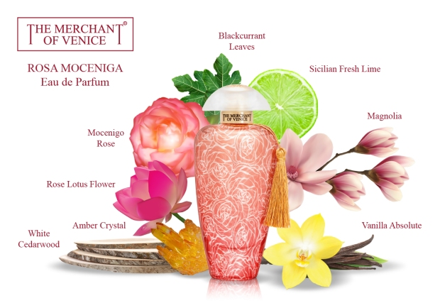 Fragrance pyramid for Rosa Moceniga